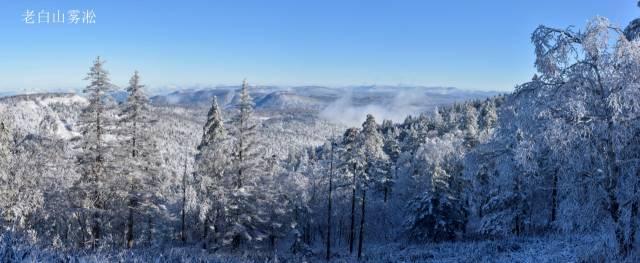 老白山原始生态风景区位于吉林省延边朝鲜族自治州敦化市西北部,这里有得天独厚的美呼吸着纯净的空气欣赏着醉人的雪景,登上高处一览雪村的全貌。 在雪村你能体验到木帮文化的深刻内涵。当你看到老一代林业人伐木使用的弯把子锯、斧头你的脑海里一定想到了在冰天雪地里,他们爬冰卧雪,砍伐树木的场景,你的耳边一定还回响着抬着木头的装车工人唱着嘹亮的木工号子,这些东西仿佛让你回到了过去,让你触摸到了历史的轨迹。 吃着山上独特的山野菜,极具东北特色小鸡炖蘑菇,再喝上两口纯粮小烧酒,驱走满身的疲惫。 乘高体在敦化站下车,在第一