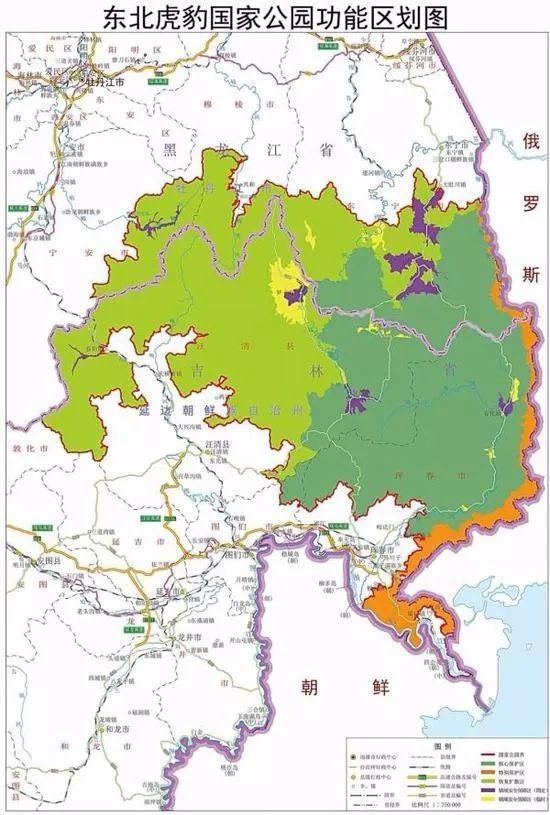 东北虎豹国家公园规划征求意见:将疏通虎豹迁移廊道图片